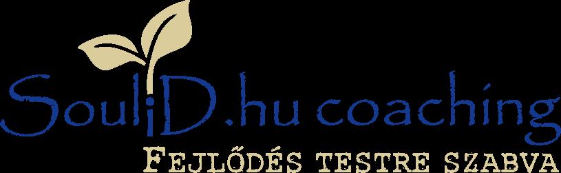 SouliD.hu
